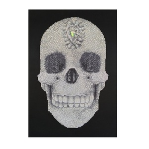 "Πίνακας Diamond Painting ""Bling-bling skull"""