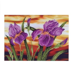 "Πίνακας Diamond Painting ""Iris evening"""